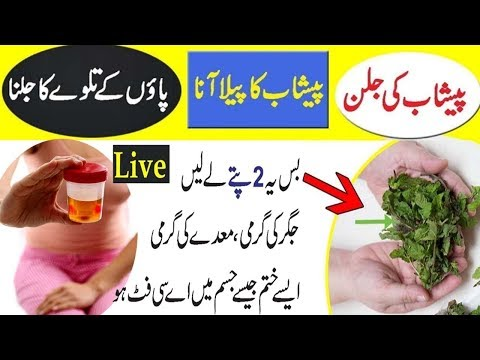 Likoria Treatment in Urdu/Hindi - Likoria Disease Treatment in Urdu