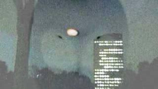 UFOが牛を誘拐?新たなるキャトルミューティレーションの画像が公開される。