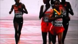 北京で開催されている世界陸上、女子マラソンで日本人の伊藤舞が7位で入賞し、リオ五輪の代表に内定した。今回のマラソンは最後まで5人集...