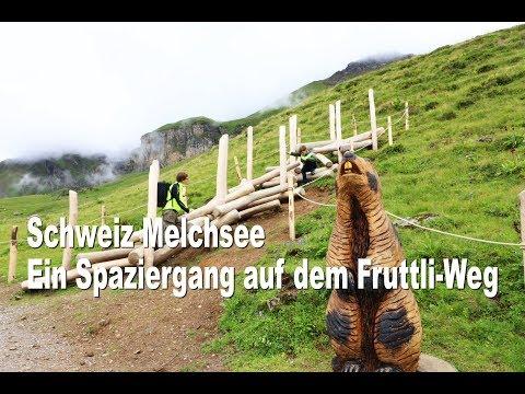 Ein Spaziergang in Berlin Britz-Süd am 5. April 2020из YouTube · Длительность: 14 мин2 с