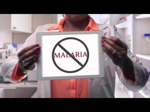 Defeating Malaria at Harvard: Making a Difference