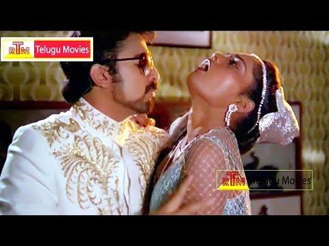 Ninna Rathiri Amma Kunuku Pattala - Kamal Hassan and Siksmitha Superhit song - Palleturi Simham