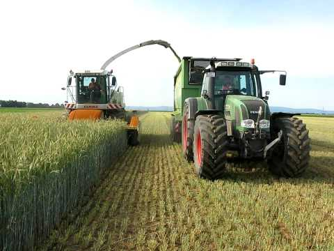 Rye chopping for bio gas reactor plant