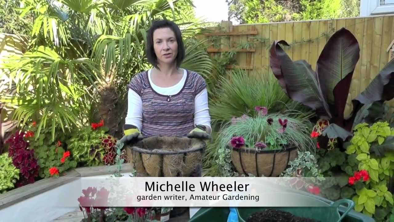Youtube Hanging Flower Baskets : Amateur gardening how to plant a winter hanging basket