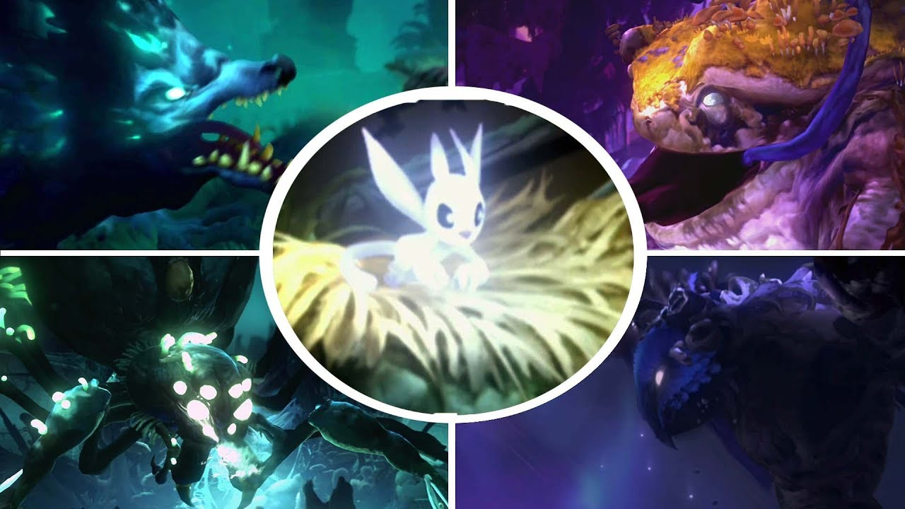 Download Ori and the Will of the Wisps - All Bosses [ 4K]