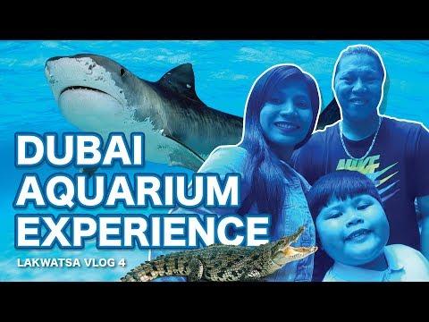 Dubai Aquarium Experience | Lakwatsa Vlog 4