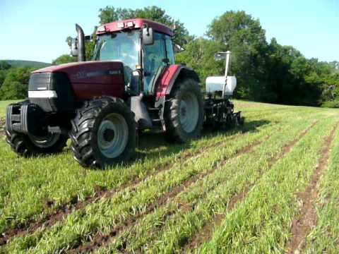 Video Strip-till Sly