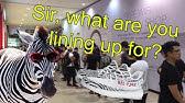 Lineups at Footlocker at Toronto Eaton Centre for Adidas Yeezy Zebra ... c9768b3ec