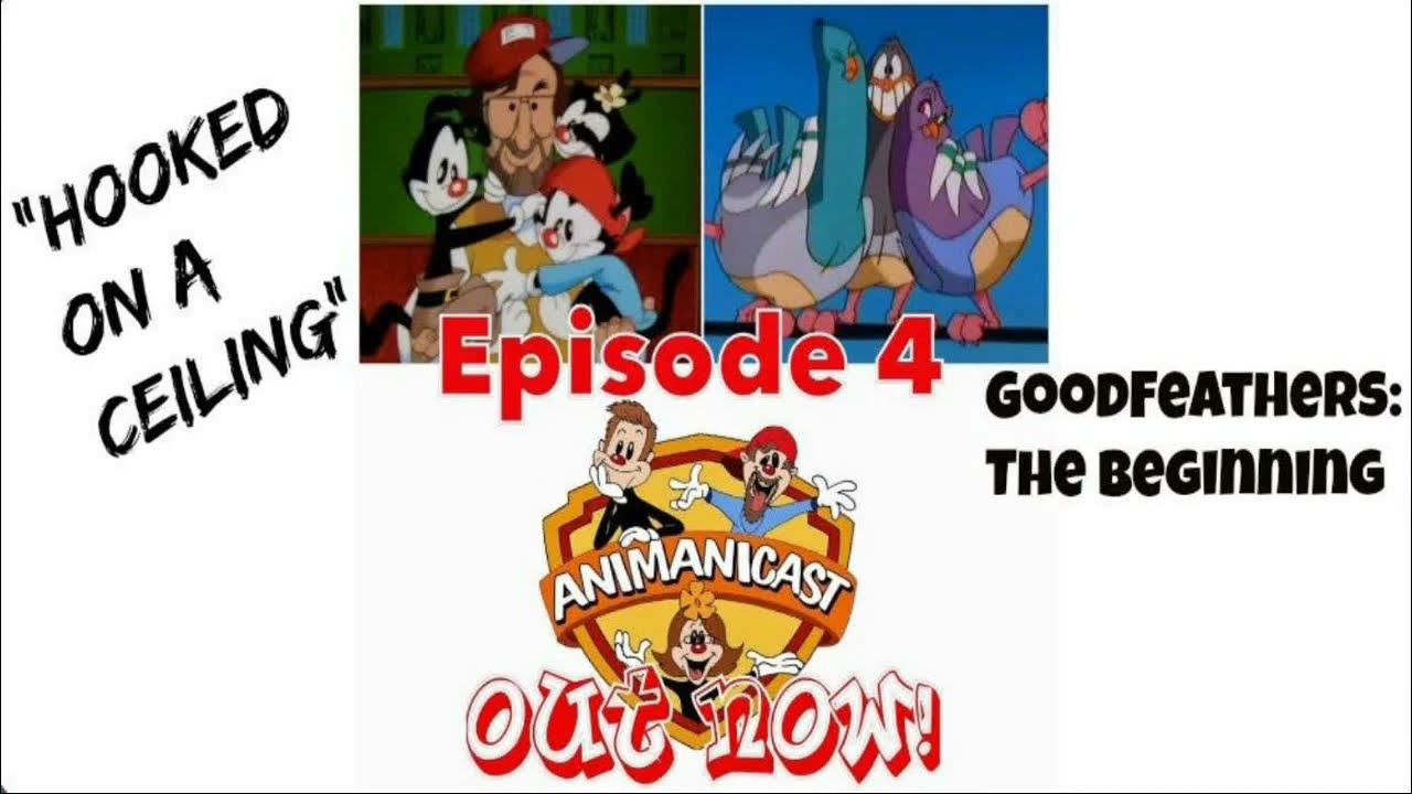 Animaniacs Hooked On A Ceiling You - New Blog Wallpapers
