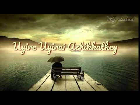 Chellame chellam song lyrics  Download👇 Tamil whatsapp status  RJ status  Album movie