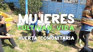 Ruta Lokura | Mujeres cultivan vida