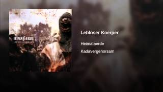 Lebloser Koerper