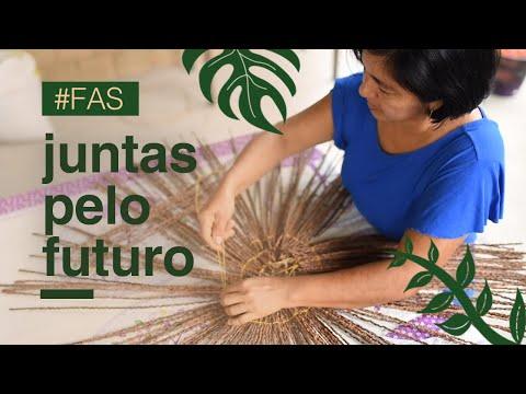 A Americanas.com e a Fundação Amazonas Sustentável agora estão juntas ;)