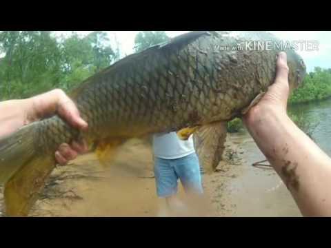 Castle Rock Lake Dam Fishing