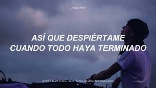 Avicii - Wake Me Up (Traducida al Español)