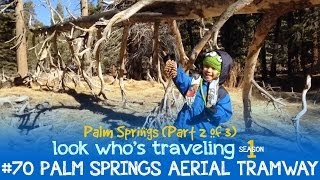 Palm Springs Aerial Tramway (Palm Springs with Kids, Day 2 ): Look Who