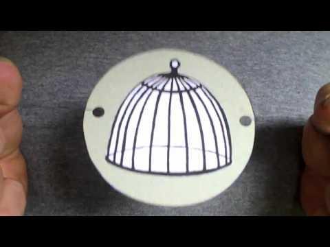 Bird and Cage Thaumatrope