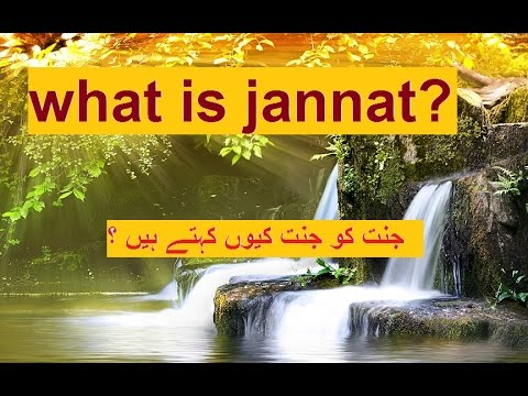 Jannat Kya Hai? What will heaven be like islam