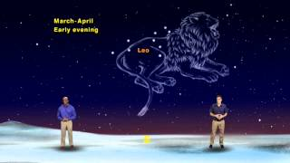 """Star Gazers """"Leo the Lion Chases Orion"""" 5 Min version"""