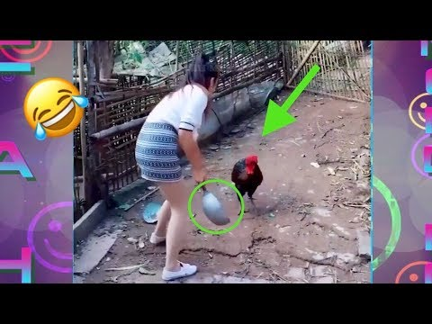Best FUNNY VIDEOS 2018 ..!!!#2 People doing STUPID things,..
