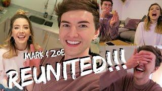 REUNITED WITH ZOE!! || MARK FERRIS