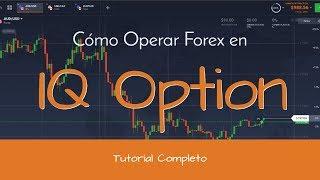 Curso GRATIS Cómo Operar Forex en IQ Option (Uso de la Plataforma)   Completo