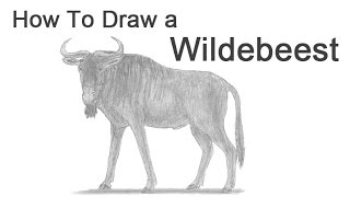 How to Draw a Wildebeest (Gnu)