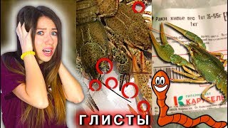 КУПИЛИ РАКИ С ГЛИСТАМИ ! Эти паразиты теперь в нас? ЧТО НАМ ДЕЛАТЬ ? | Elli Di Online