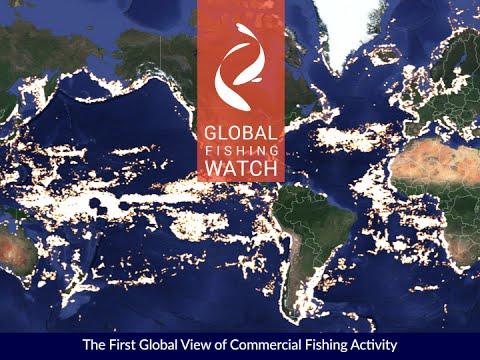 Introducing Global Fishing Watch