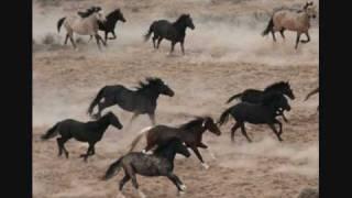 Alicia Keys ft. Adam Levine - Unplugged - Wild Horses