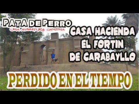 HACIENDA EL FORTIN DE CARABAYLLO- PATA DE PERRO una aventura canina #casahaciendaelfortin