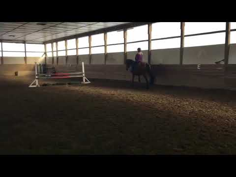 Mountain Eire - Schooling At Home
