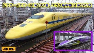 ドクターイエローとエヴァ新幹線500系、一緒に撮れませんでした【4K】