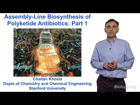 Chaitan Khosla (Stanford) Part 1: An Introduction to Polyketide Assembly Lines