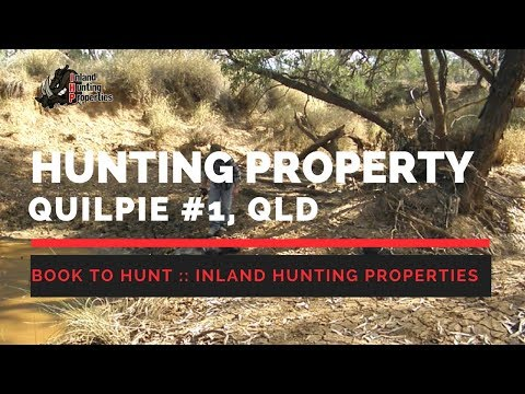 QUILPIE #1 Queensland | Inland Hunting Properties Australia | Team Mad Mullet