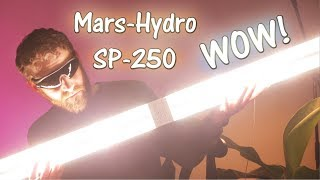 Mars-Hydo SP-250 Review