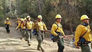 Samoan Firefighters Raise Spirits On Fire Lines With Song