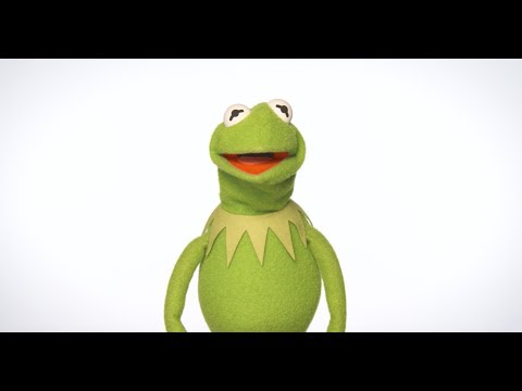 Happy New Year from Kermit the Frog!   The Muppets