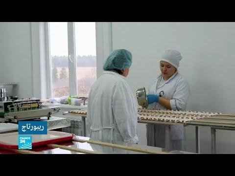 روسيا: نساء مسنات يعدن الحياة لقريتهن بفضل التوت والعسل  - نشر قبل 8 دقيقة