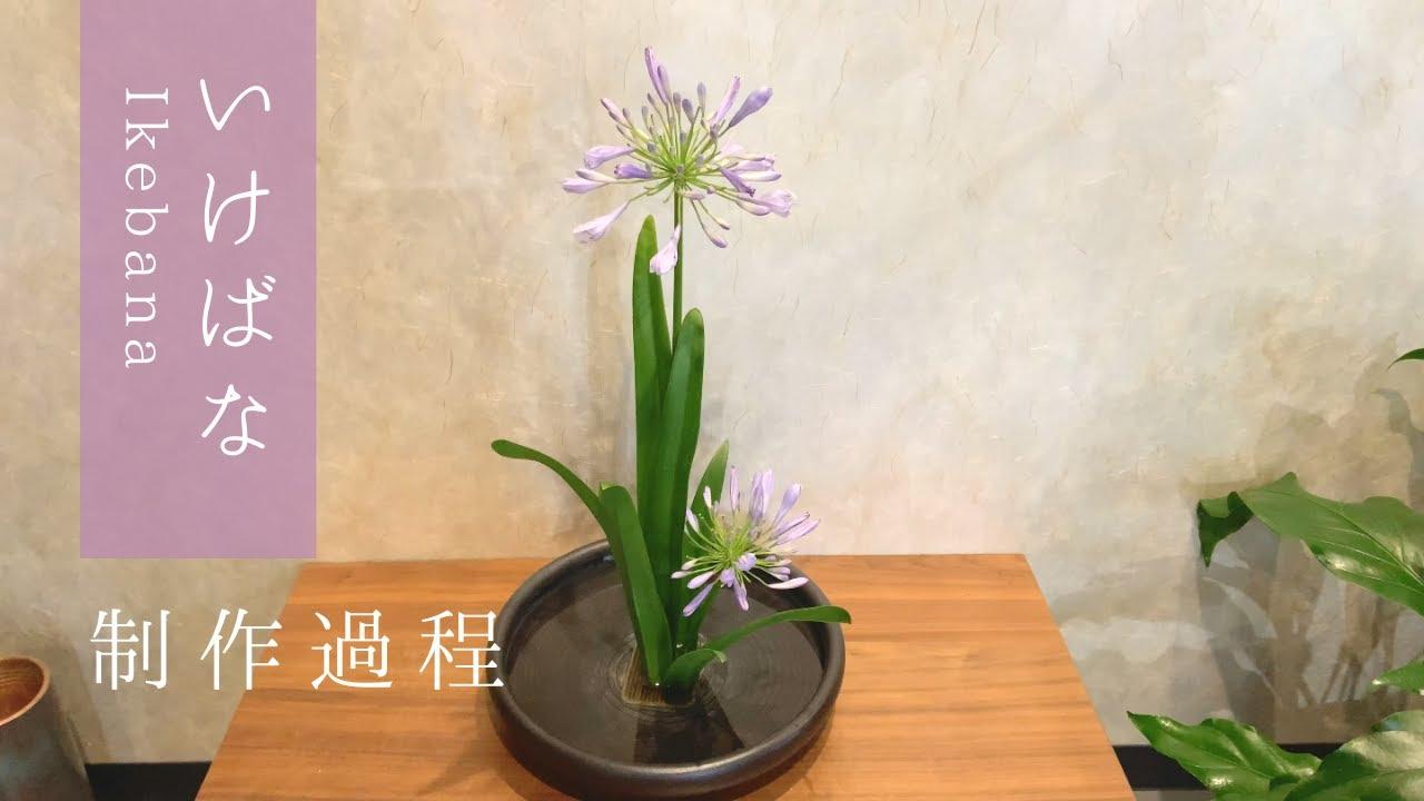 生け花 -ムラサキクンシラン-