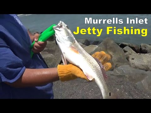 MURRELLS INLET JETTY FISHING - SOUTH CAROLINA 2017