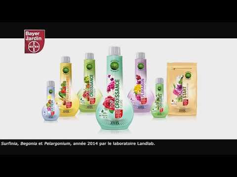 Spot TV BAYER Jardin par l'agence de Publicité BIG Success