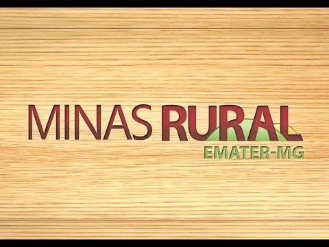 MINAS RURAL - 1105 - 13/01/18