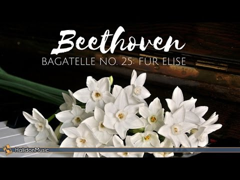 Beethoven  Für Elise  Classical Piano Music