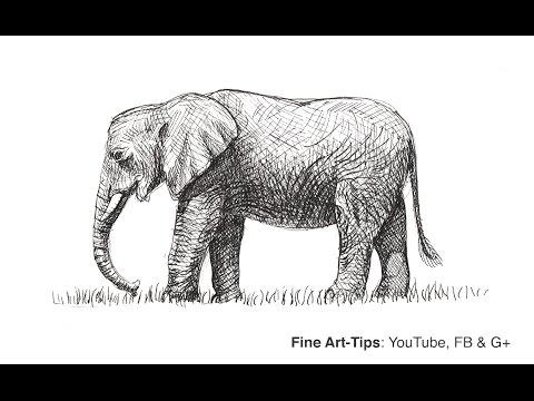 Cómo Dibujar Un Elefante Africano Con Bolígrafo