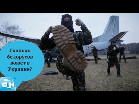 Сколько белорусов воюет