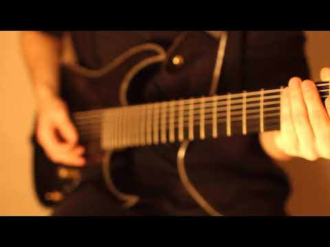 Beyond The Setting Sun - Loquere Ut Videam Te || Guitar Playthrough by Elias Neider ||