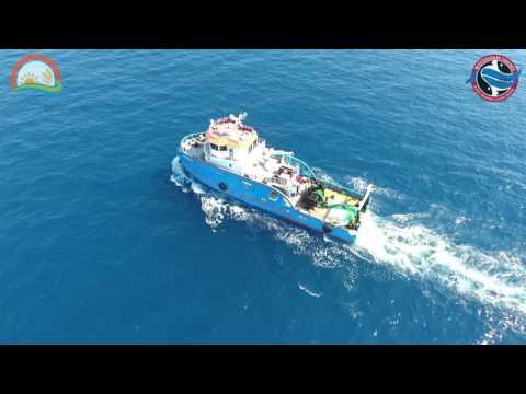 Akdeniz Su Ürünleri FABA Tanıtım Filmi 2016