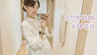 [임신34주] 프로피쿡계란찜기, 다비앙루이보스, 새 잠…