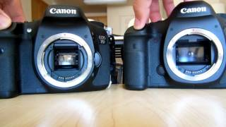 Canon EOS 5D Mark III vs EOS 7D shutter sound and speed